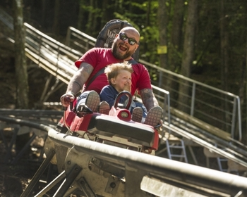 Fforest_Coaster_May17_0027_500_400_c1.jpg